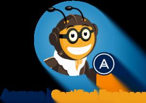 snel acronis certified engineer