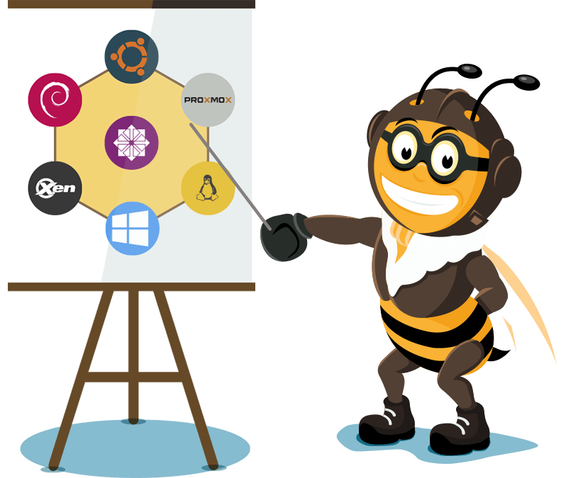 Operating systems bee