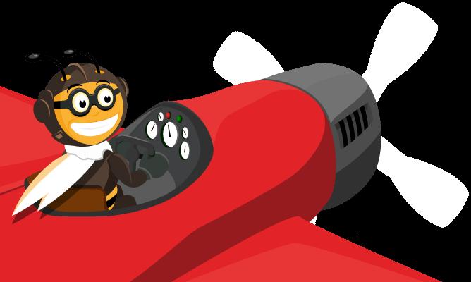 bee-plane