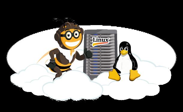 Linux managed VPS server